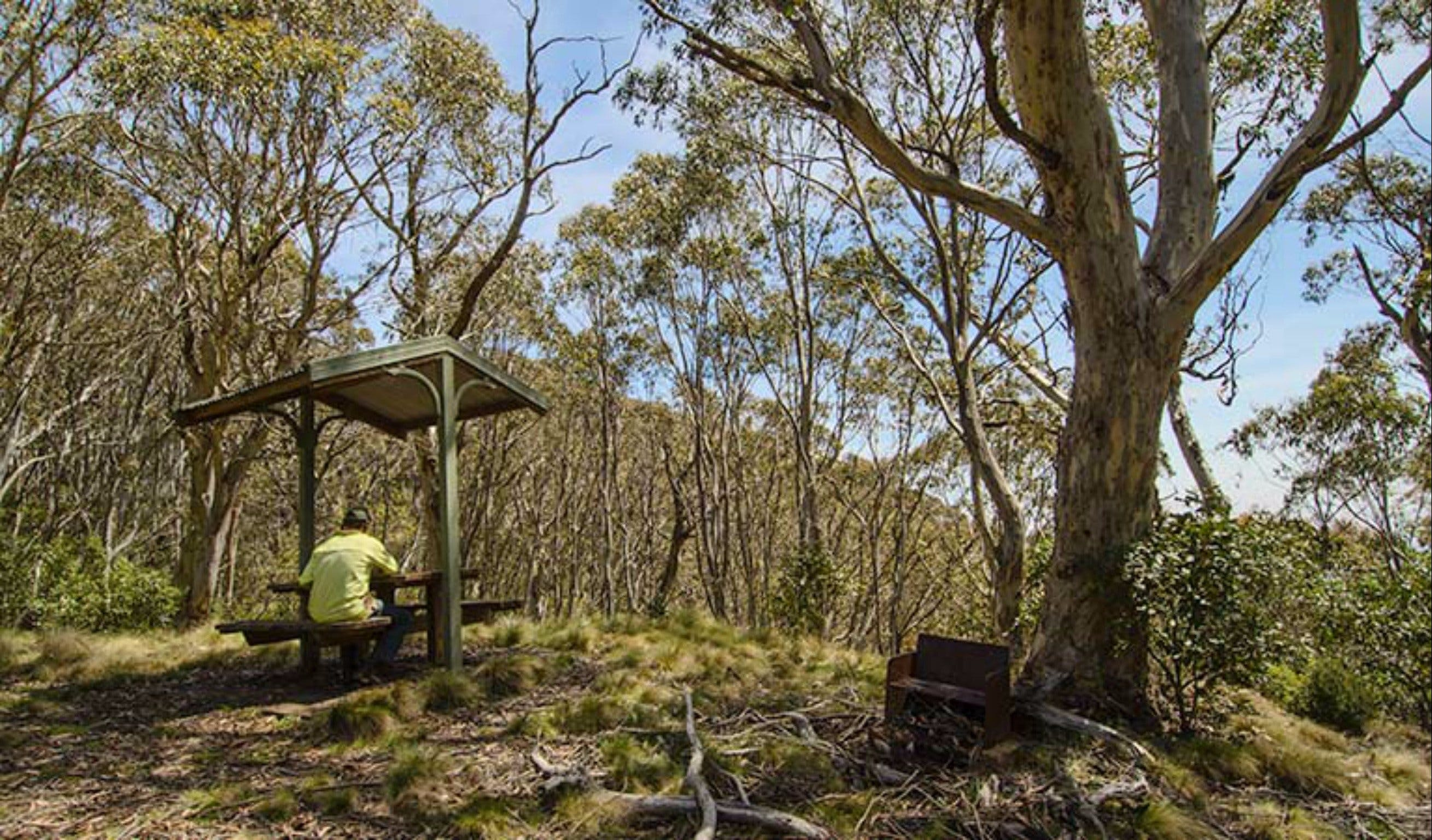Mount Barrington picnic area - Geraldton Accommodation