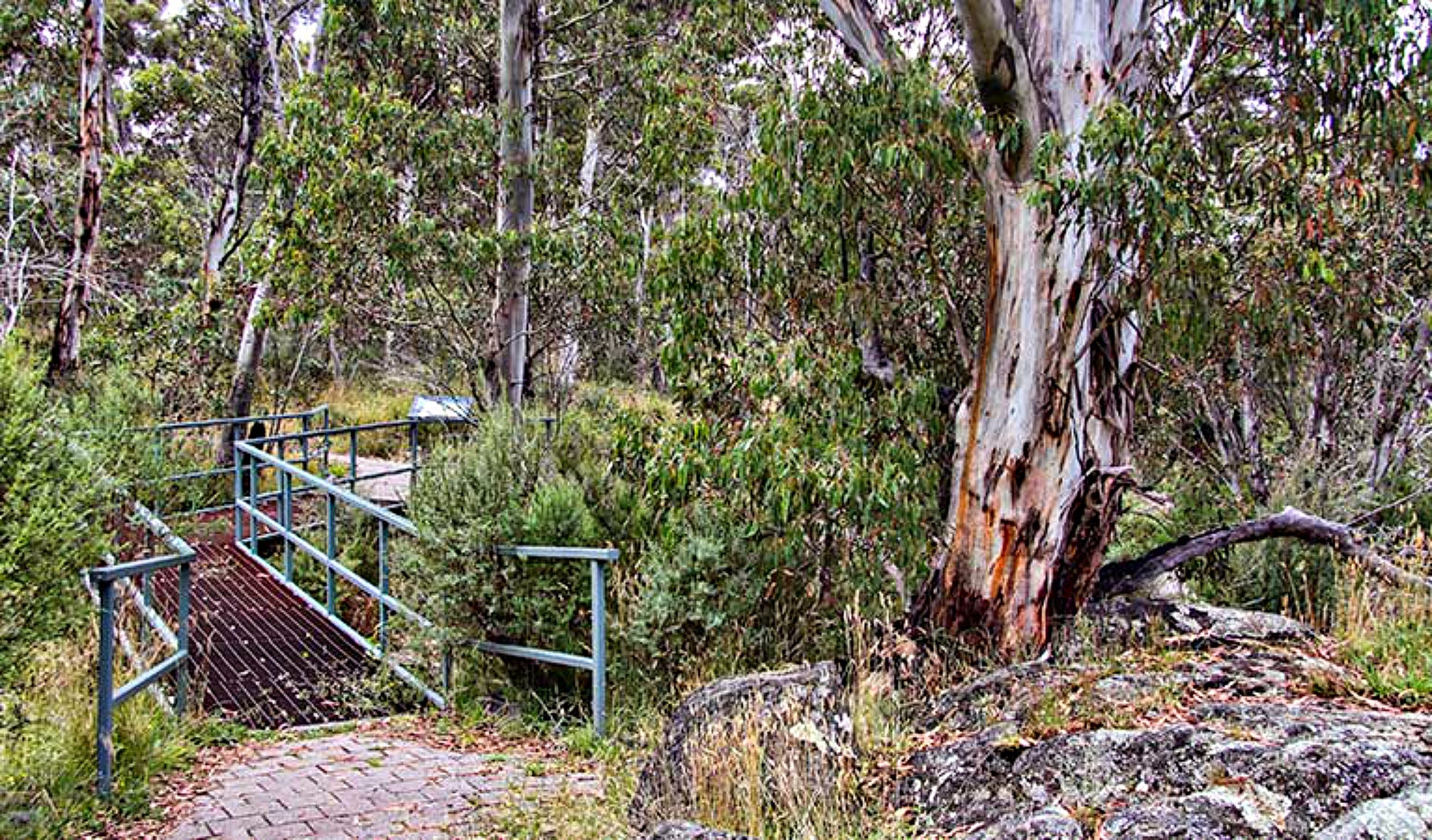 Sawpit Walking Track - Geraldton Accommodation