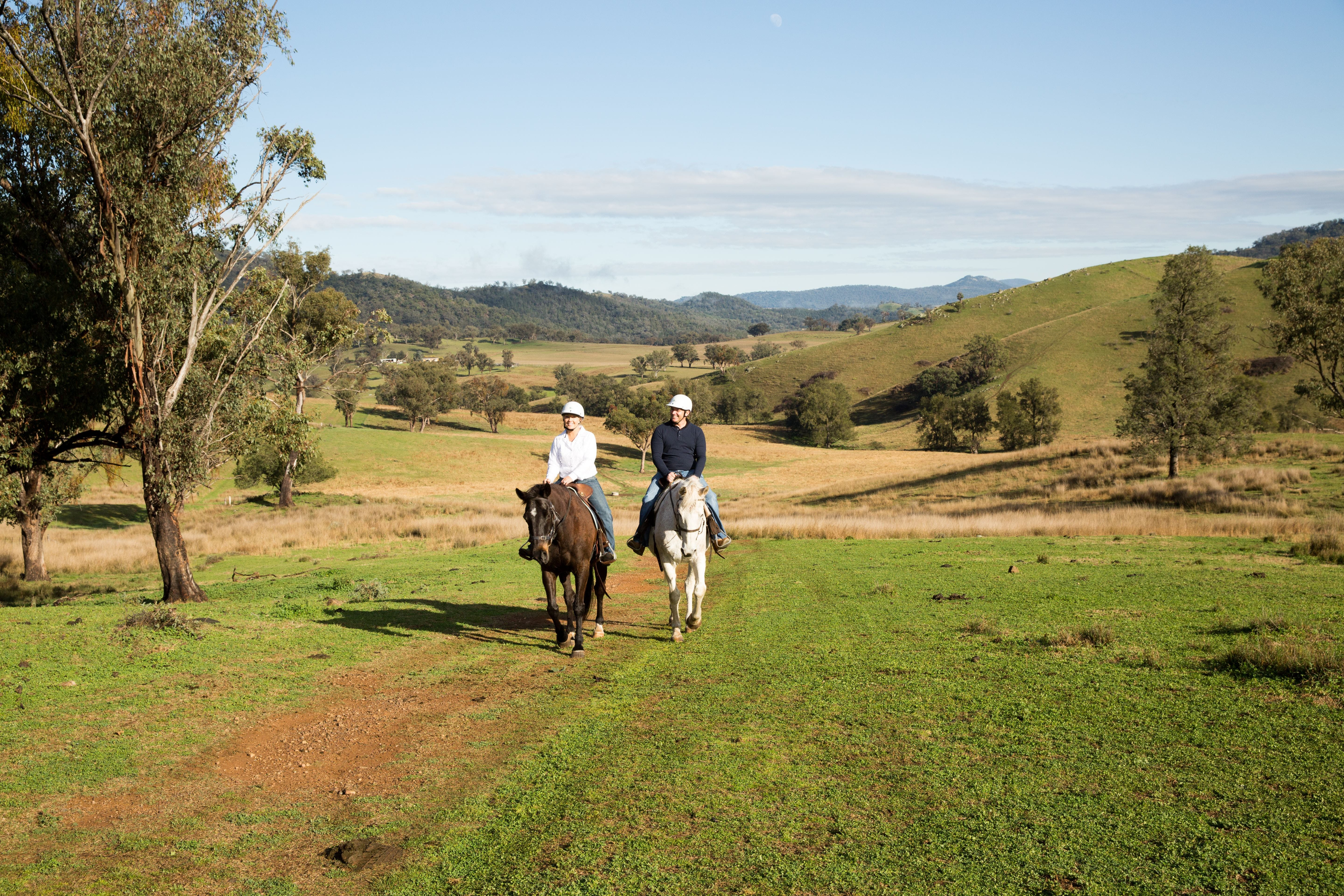 Tamworth and Kootingal Horse Riding Adventures - Geraldton Accommodation
