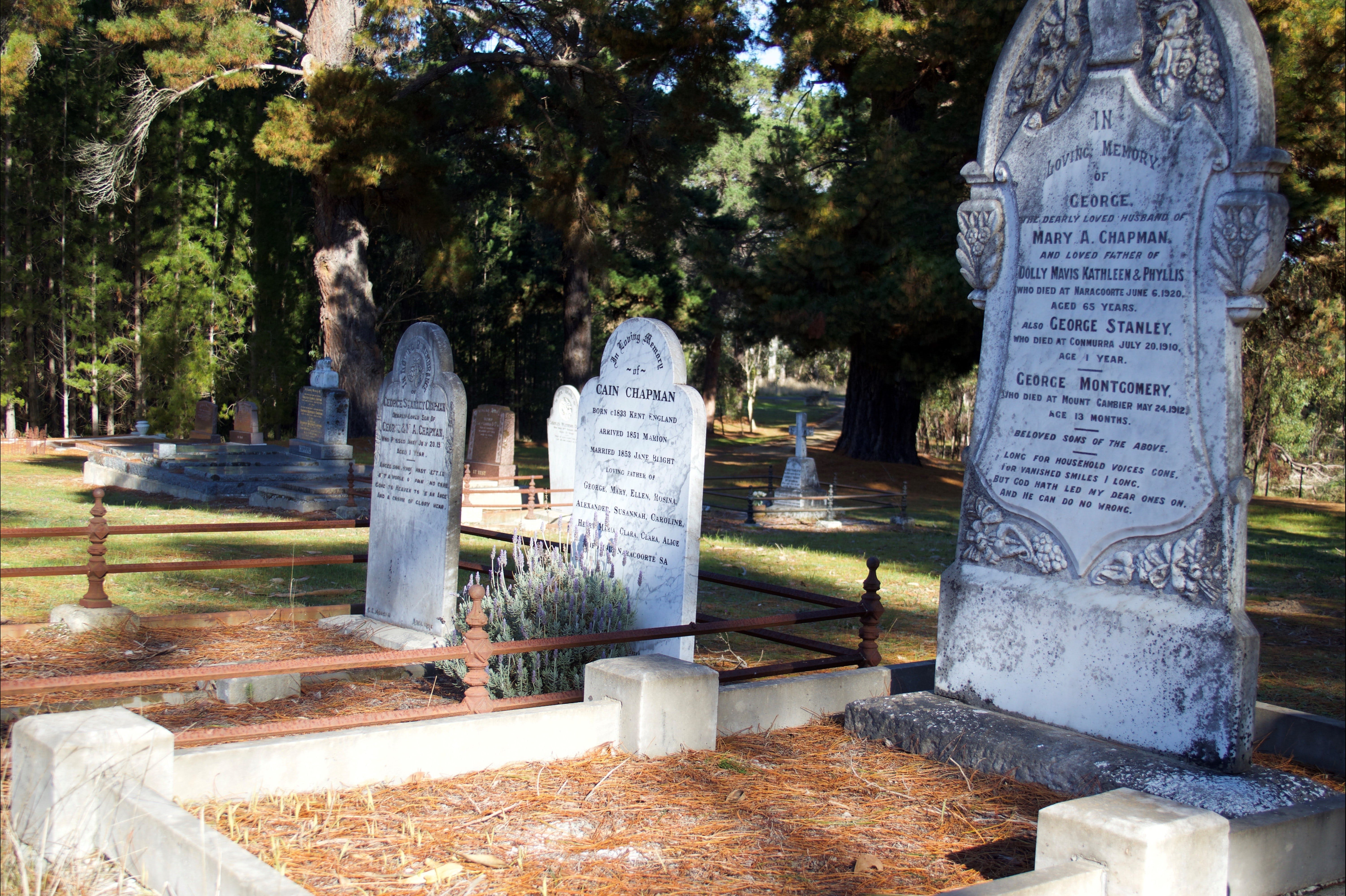 Lucindale Cemetery - Geraldton Accommodation