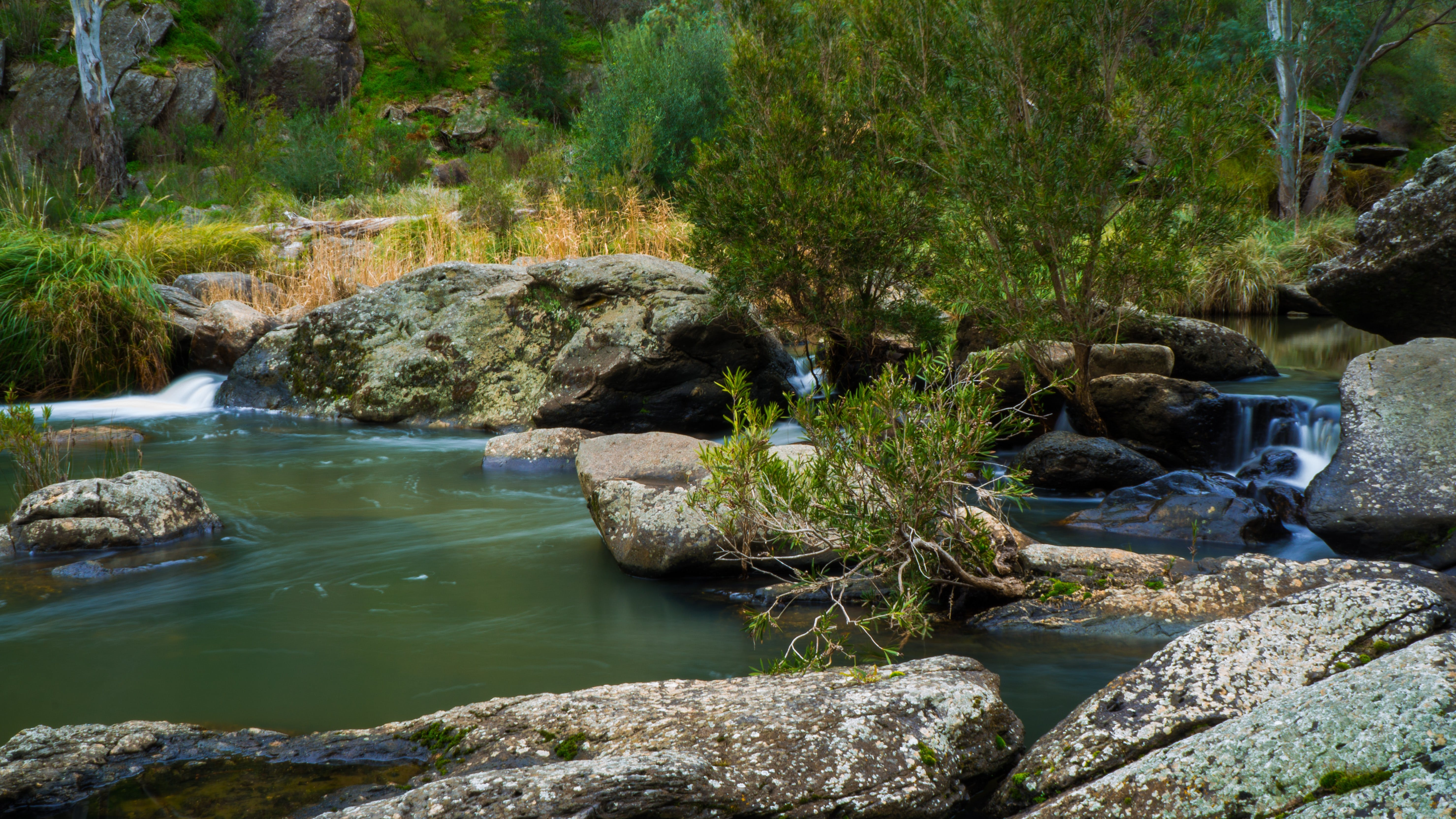 Onkaparinga River National Park - Geraldton Accommodation