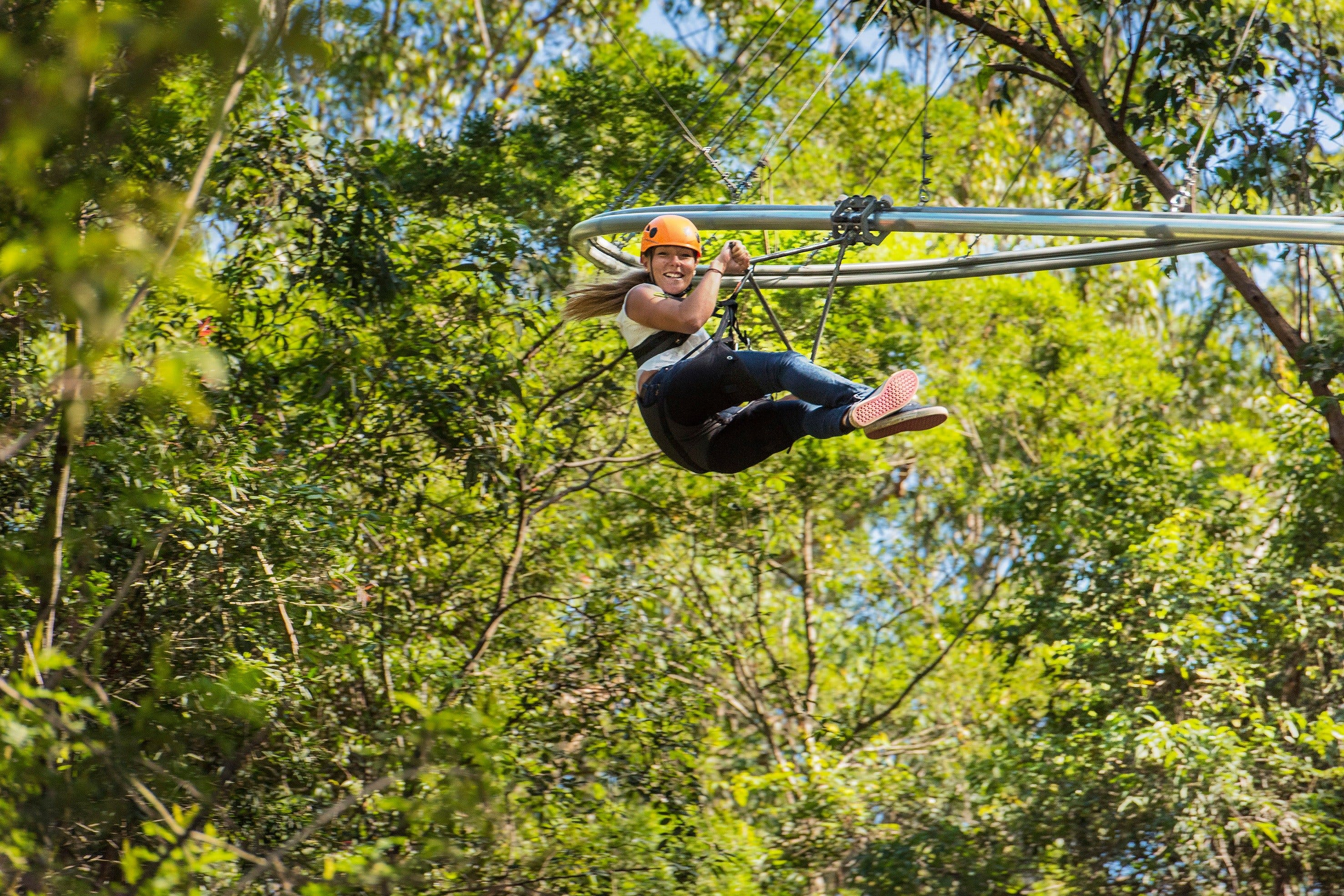 TreeTop Crazy Rider - Geraldton Accommodation