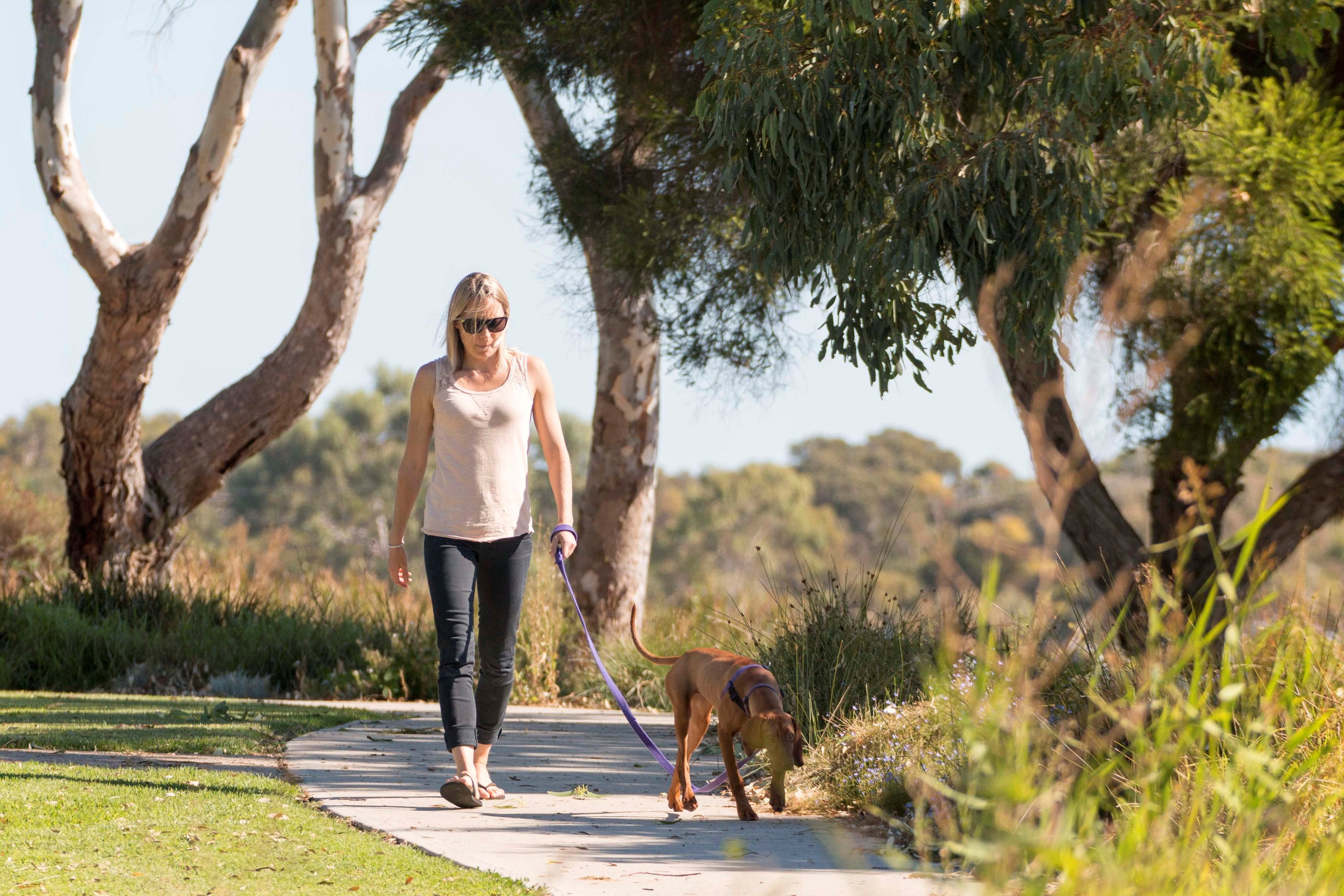 Meningie Walking and Cycling Trails - Geraldton Accommodation