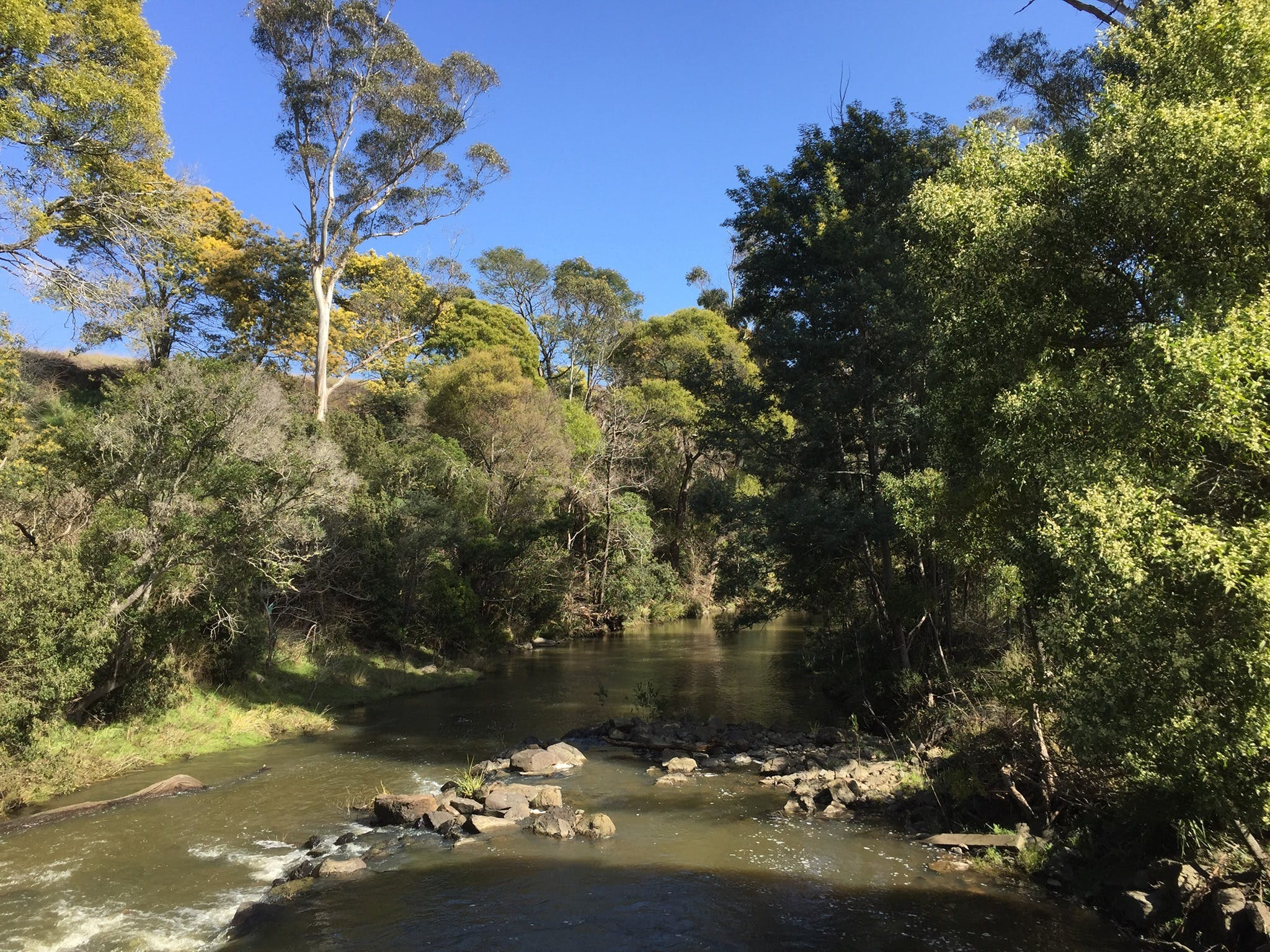 Pipers River Board Walk - Geraldton Accommodation