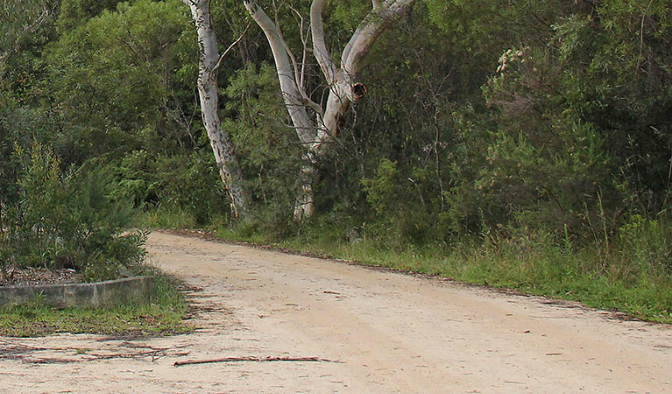 Riverview walking track - Geraldton Accommodation