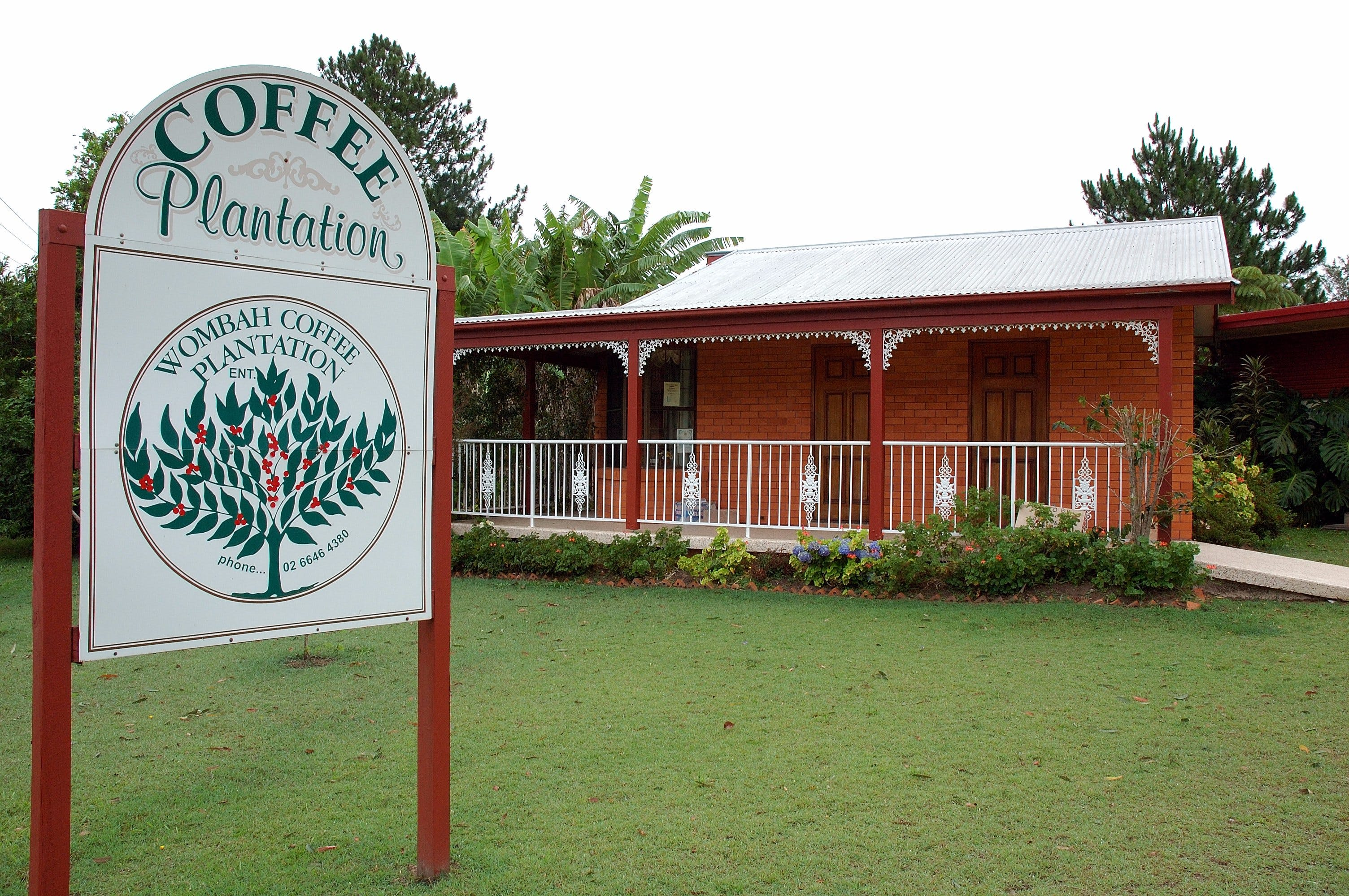 Wombah Coffee Plantation - Geraldton Accommodation