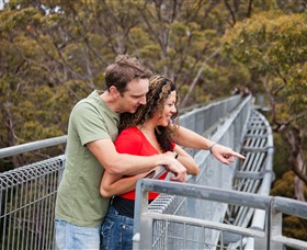 Valley of the Giants Tree Top Walk - Geraldton Accommodation