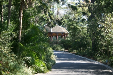 Royal Botanic Gardens Victoria - Geraldton Accommodation