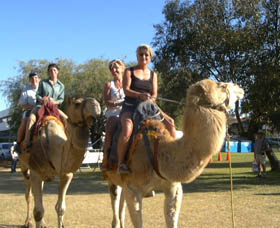 Calamunnda Camel Farm - Geraldton Accommodation