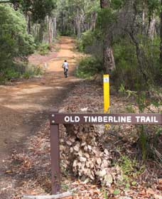 Old Timberline and Sidings Rail Trails - Geraldton Accommodation