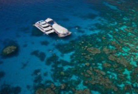 Great Adventures Reef and Green Island Cruises - Geraldton Accommodation