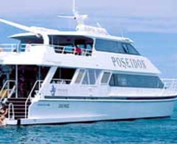 Poseidon Outer Reef Cruises - Geraldton Accommodation