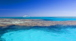 Reef Jet Cruises - Geraldton Accommodation