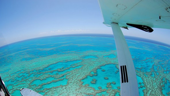 Air Whitsunday Day Tours - Geraldton Accommodation