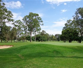 Singleton Golf Club - Geraldton Accommodation