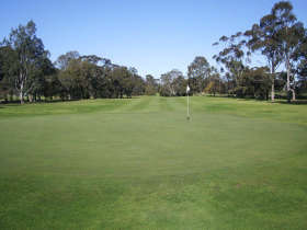 Maffra Golf Club - Geraldton Accommodation