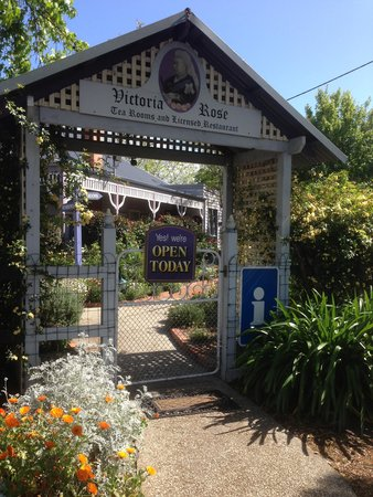 Victoria Rose Tea Rooms - Geraldton Accommodation