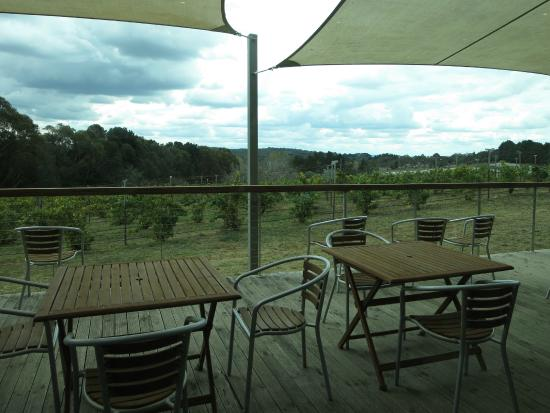 Lark Hill Winery Restaurant - Geraldton Accommodation