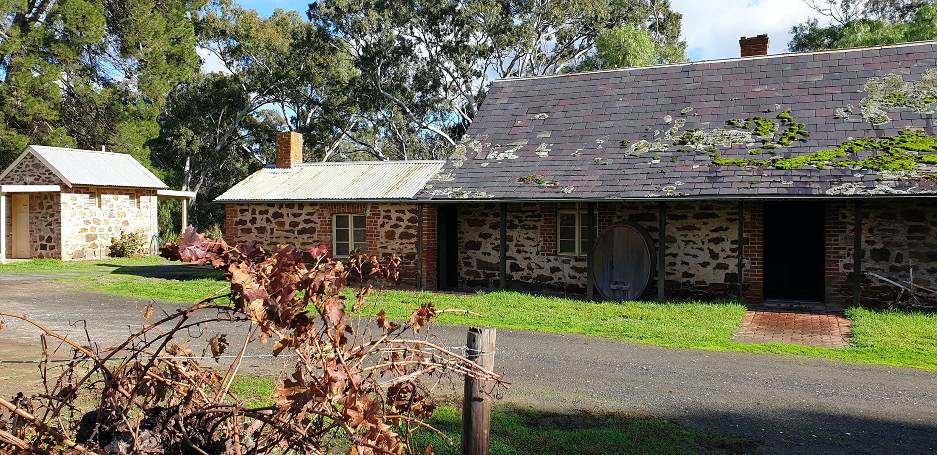 Jenke Vineyards - Geraldton Accommodation