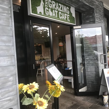 Grazing Goat Cafe - Geraldton Accommodation