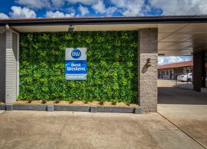 Best Western Endeavour Motel - Geraldton Accommodation