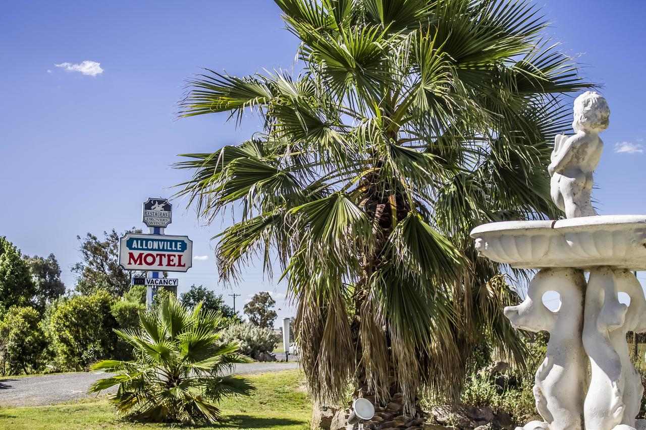 Allonville Gardens Motel - Geraldton Accommodation