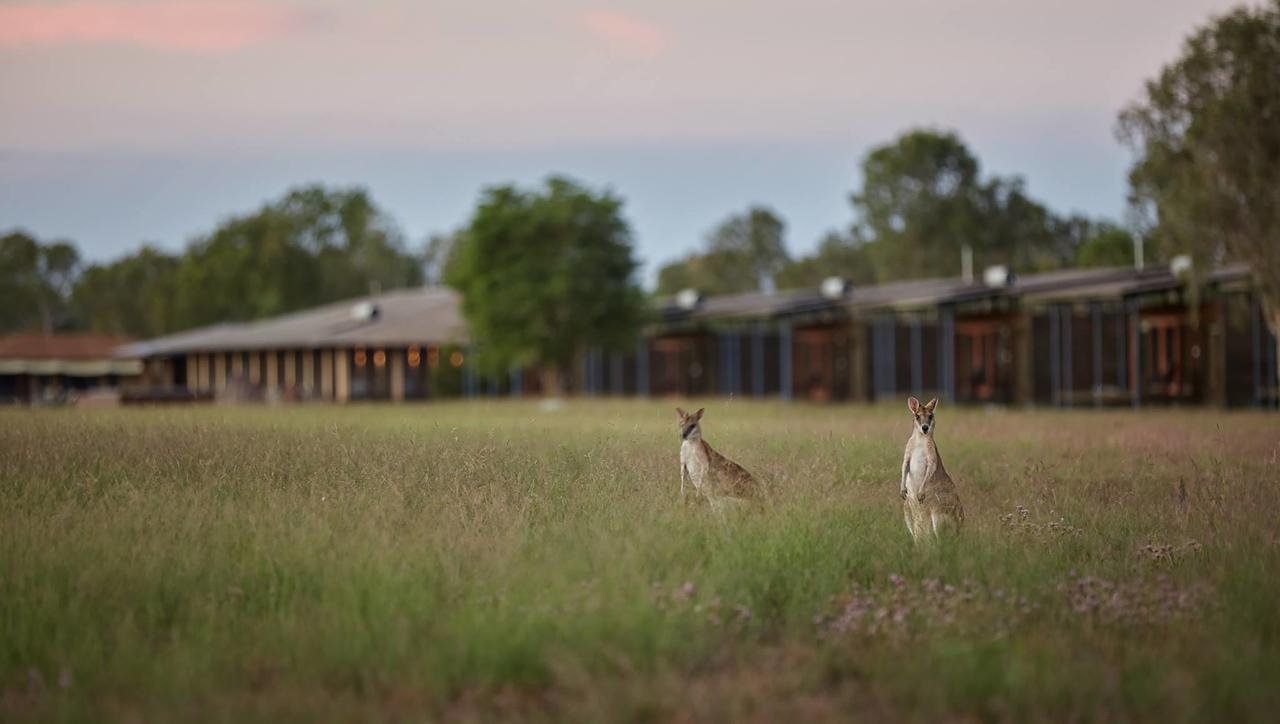 Wildman Wilderness Lodge - Geraldton Accommodation