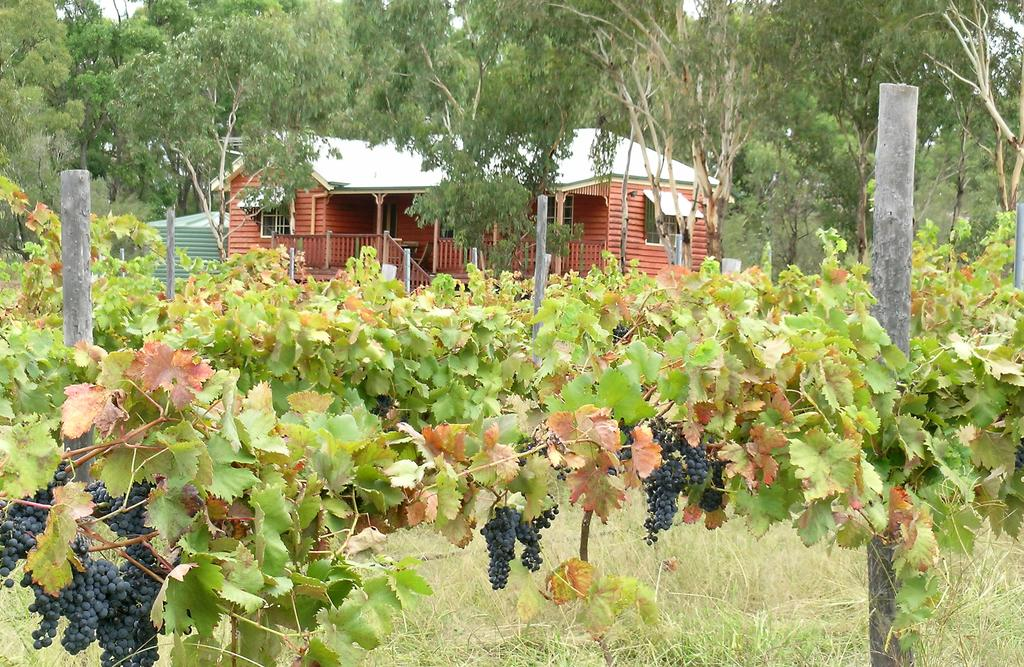 Fergies Hill Spa Cottage  Granite Ridge Wines - Geraldton Accommodation