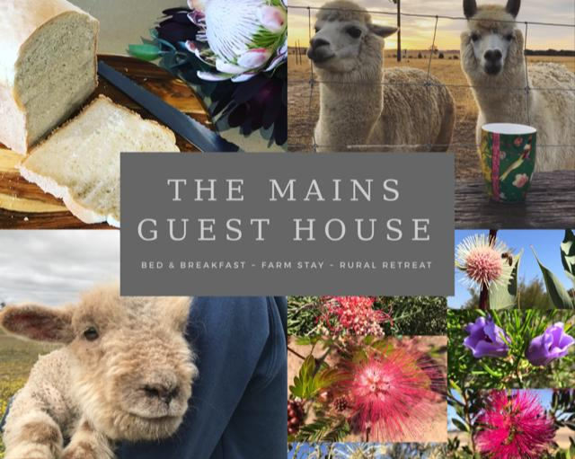 The Mains Guest House - Geraldton Accommodation