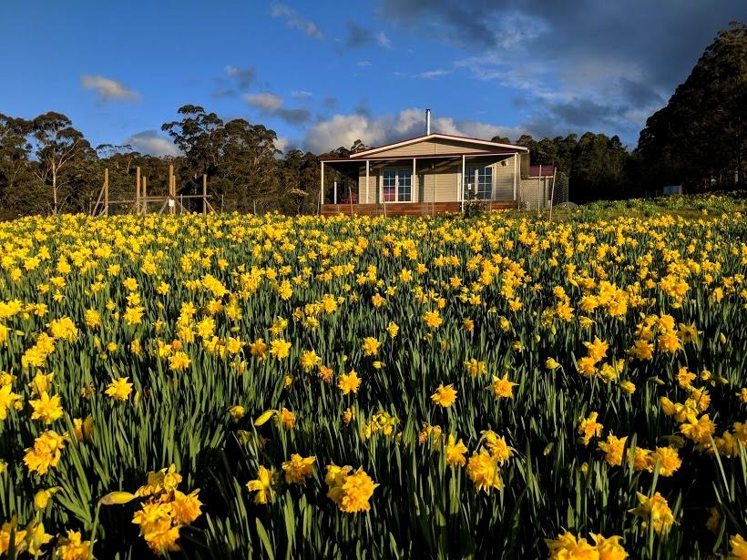 Mountain Blue Guest House - Geraldton Accommodation